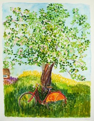 rood_cykel_ljusare_version.jpg