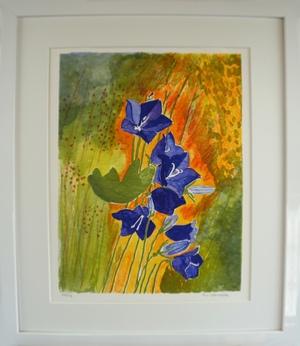 """Inramad litografi """"Blåklockor"""" 43x53 cm (D)"""